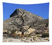 Red Rock Canyon Nv 1 Tapestry