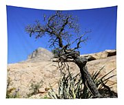 Red Rock Canyon Nv 10 Tapestry