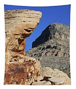Red Rock Canyon Nv 2 Tapestry