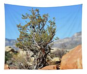 Red Rock Canyon Nv 4 Tapestry