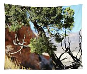 Red Rock Canyon Nv 5 Tapestry
