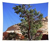 Red Rock Canyon Nv 9 Tapestry