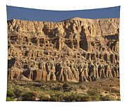 Red Rock Canyon State Park Tapestry