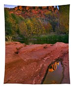 Red Rock Reflection Tapestry