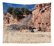 Red Rock Riders Tapestry