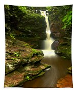 Red Rocks And Lush Green Forest Tapestry
