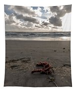 Red Rope On The Beach Tapestry