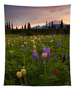 Red Sky Meadow Tapestry