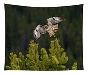 Red-tail Flight At Sunset Tapestry