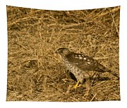 Red Tail Hawk Walking Tapestry