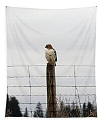 Red Tailed Hawk On The Lookout Tapestry