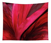 Red Ti Leaf Plant - Hawaii Tapestry