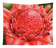 Red Torch Ginger Tapestry