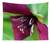 Red Trillium.. Tapestry