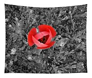 Red Tulip From Above Tapestry