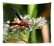 Red Wasp On Lace Tapestry