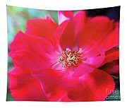 Red White Rose Tapestry
