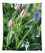Red White Tulips Tapestry