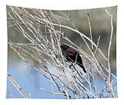 Red Winged Black Bird At Chatfield Tapestry