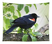 Red Winged In Montreal Tapestry