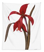 Redout�: St. James Lily Tapestry