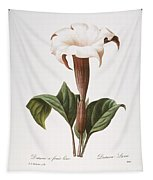 Redoute: Datura, 1833 Tapestry