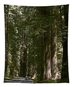 Redwood Highway Tapestry