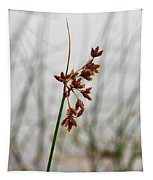 Reeds Tapestry