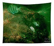 Reef Life Off Hawaii Tapestry
