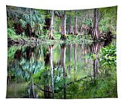 Reflection Of Cypress Trees Tapestry