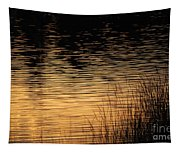 Reflection On A Sunset Tapestry