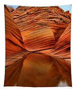 Reflections At The Wave Tapestry