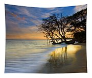 Reflections Of Paradise Tapestry