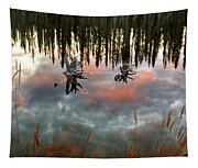Reflections Off Pond In British Columbia Tapestry
