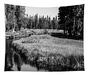 Reflective Creek Tapestry