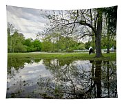 Reflective Field In Spring Tapestry