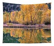 Reflecton Before Sunrise Tapestry