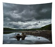 Reservoir Logs Tapestry