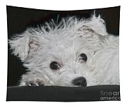 Resting Puppy Tapestry