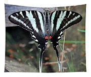 Resting Zebra Swallowtail Butterfly Square Tapestry