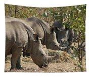 Rhinos,  Zambia Tapestry