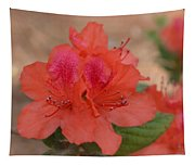 Rhododendrum Oldhamii Tapestry