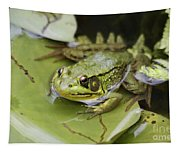 Ribbet In The Pond Tapestry
