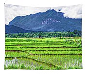 Rice Paddies And Mountains Tapestry