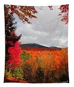 Rich Fall New Hampshire Colors Tapestry