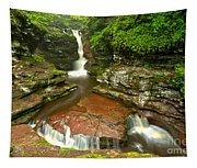 Ricketts Glen Adams Falls Tapestry
