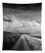 Ride The Moonlight Tapestry