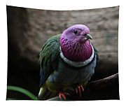 Ring Necked Dove Tapestry