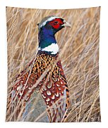 Ring-necked Pheasant  Tapestry