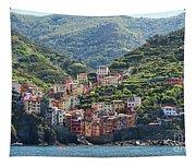 Riomaggiore 0576 Crop Tapestry